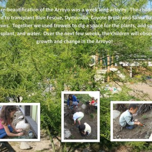 Arroyo Re-beautification
