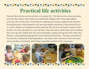 pratical life panel