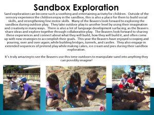 sand box panel