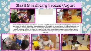 basilstrawberryfrozenyogurt