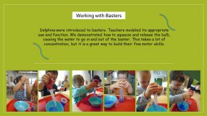 Basters