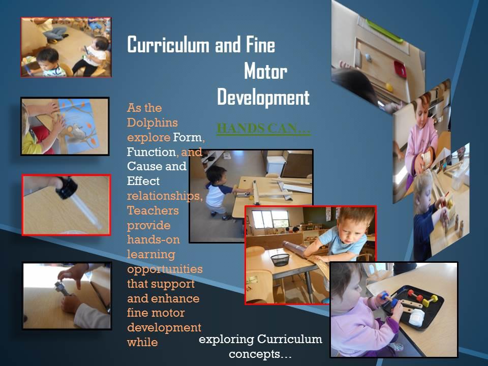 Curriculum and Fine Motor Development