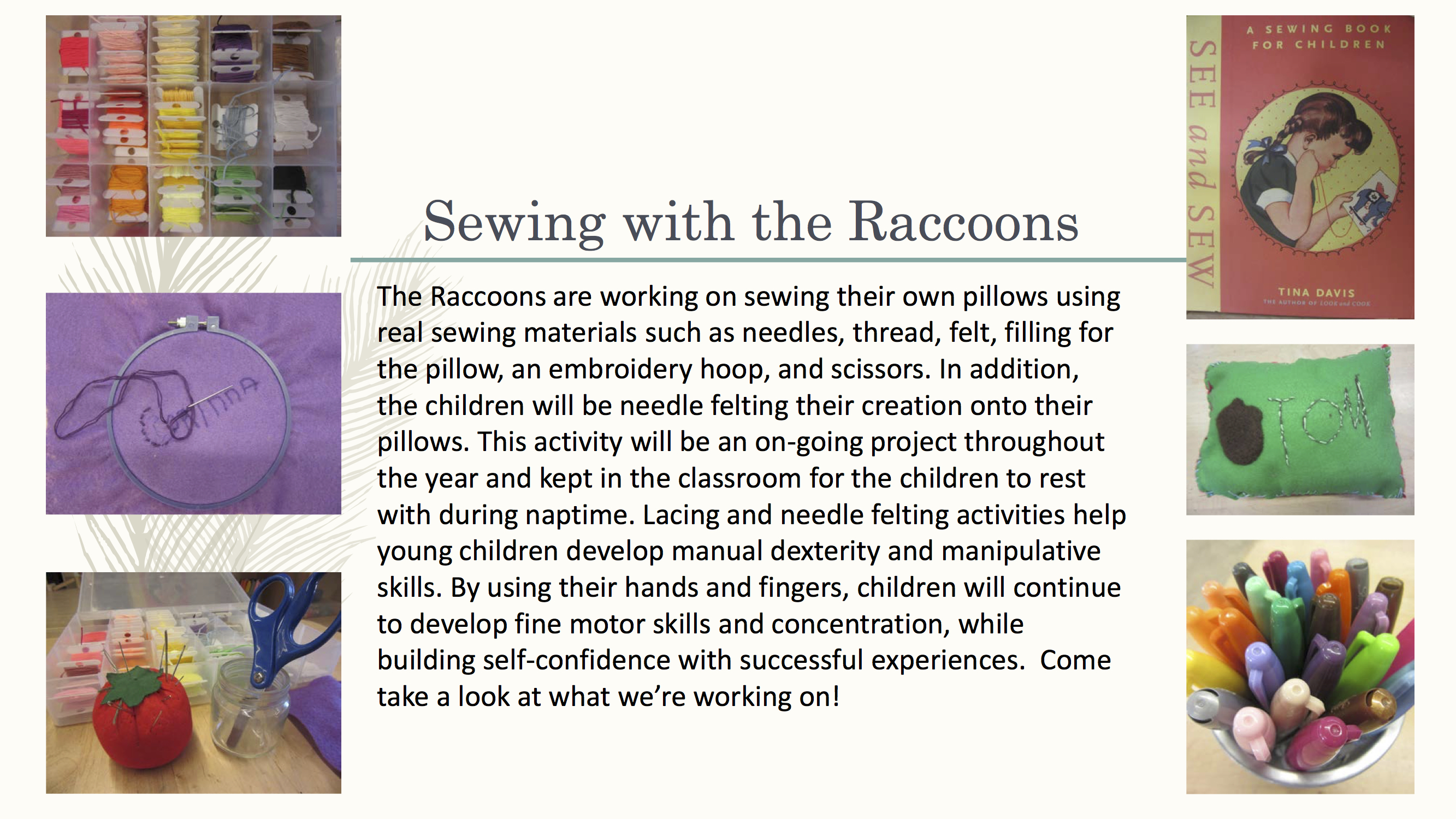Sewing with the Raccoons