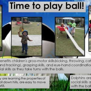 As Dolphins play, they are learning the properties of balls: They bounce, roll down hills, are easy to move and difficult to keep still.