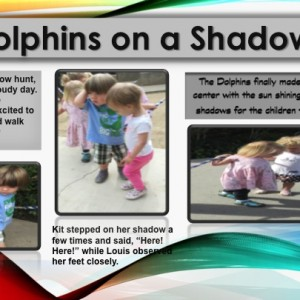 Dolphins on a Shadow Hunt panel