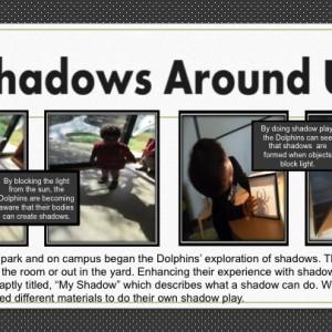 My Shadow panel